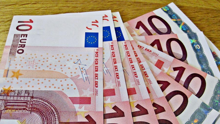 Eurozone economy growth hits highest in decade