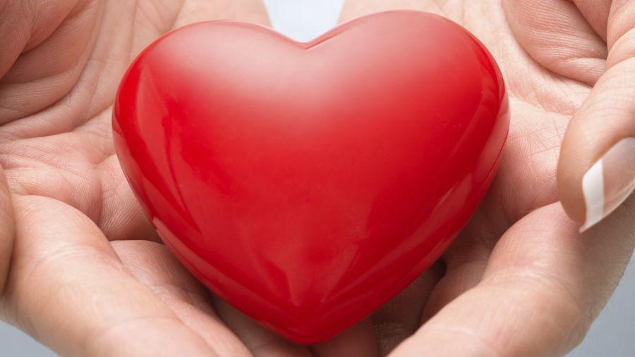 Women doctors 'best for female heart patients'