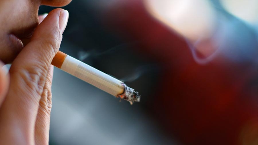 Children of smokers 'risk adult disease'