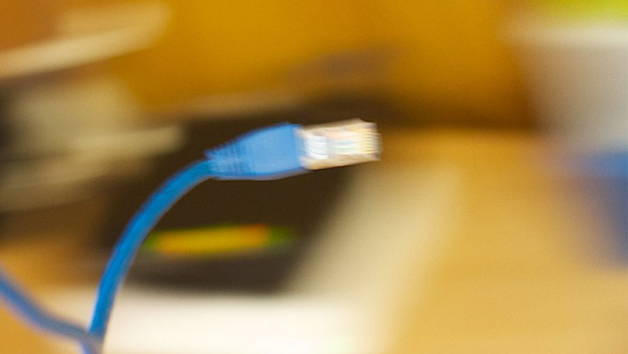 Internet service to be disrupted for 11 days