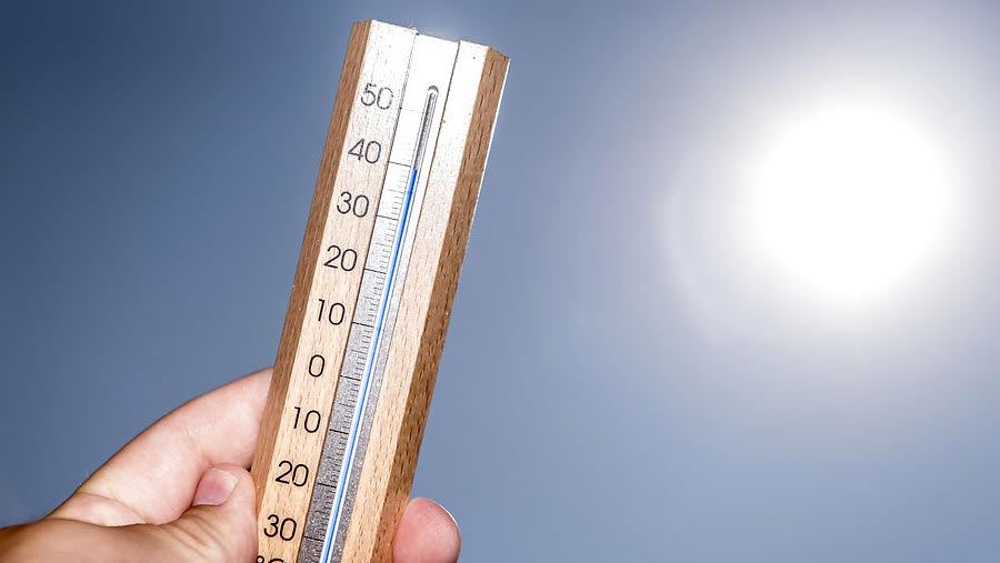 European countries set new June heat records