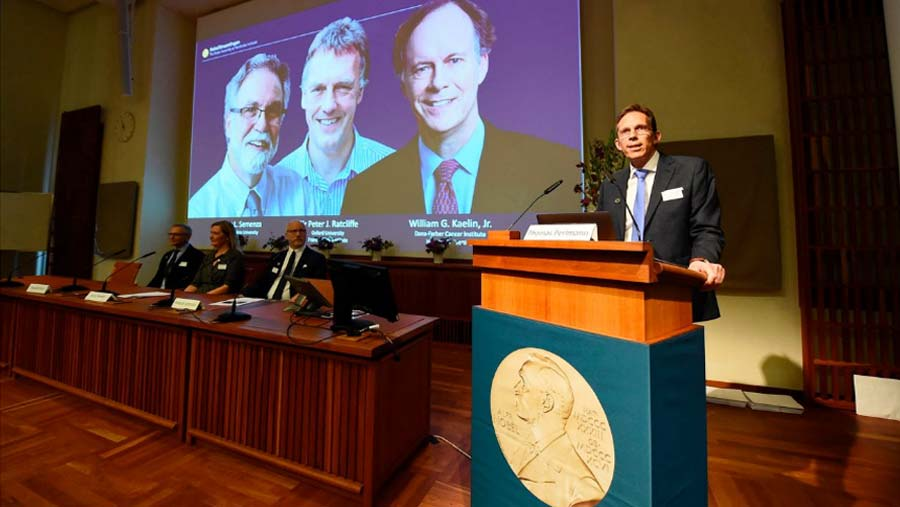 Nobel Prize in Medicine awarded to US and British scientists
