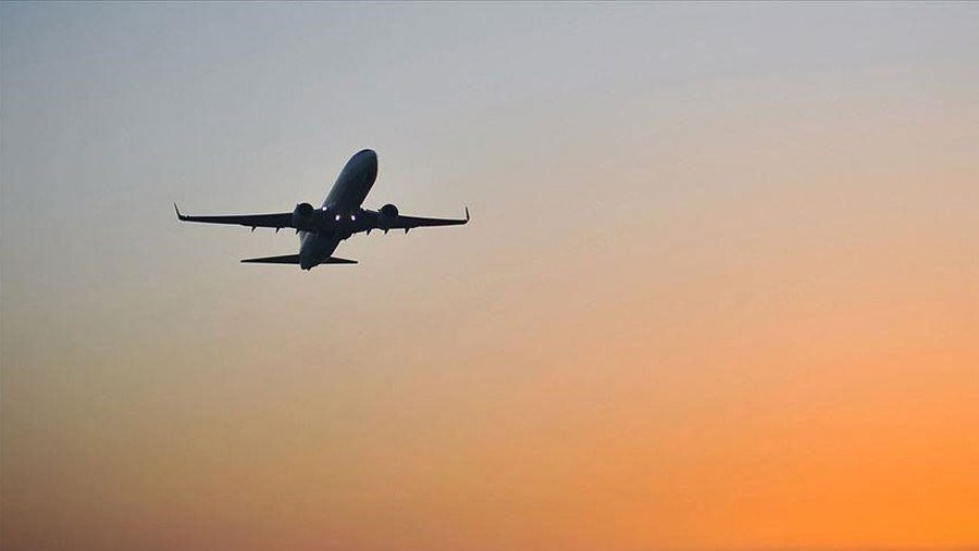 Flight suspension extended for another week