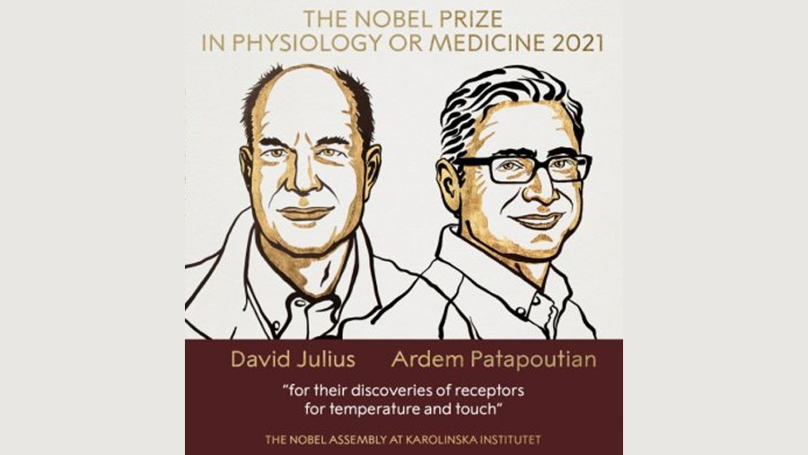 US duo win Nobel for work on temperature and touch
